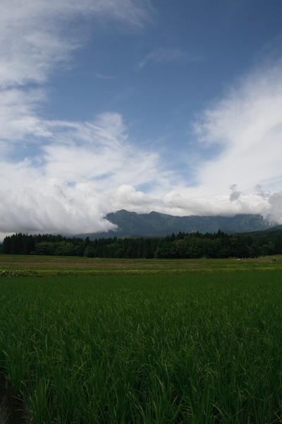 田んぼと空と妙高山