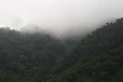朝霧の山々