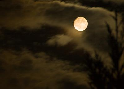 皆既月食前日の月