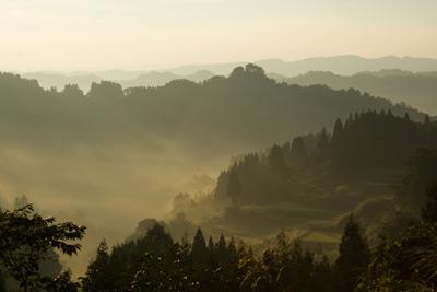 朝霧が朝焼けに染まる