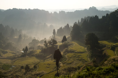 朝霧の松代蒲生の棚田