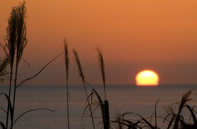 秋を感じる夕日
