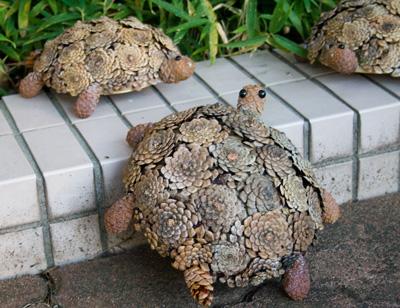 松ぼっくりの亀