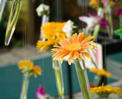 試験管の中の花