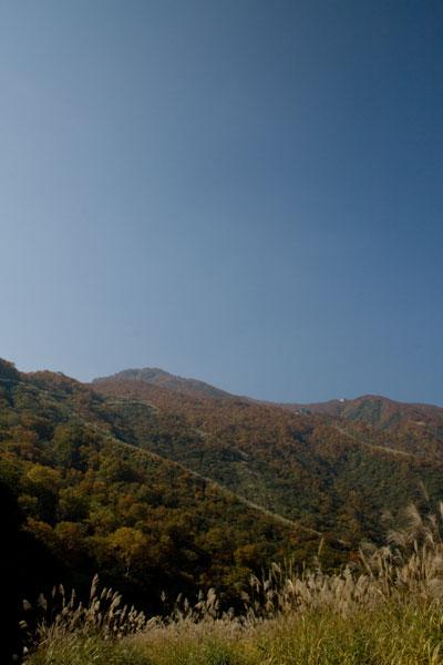 大毛無山の紅葉