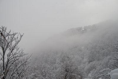 朝靄に雪景色