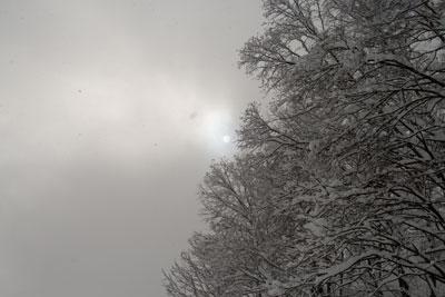 雲から太陽