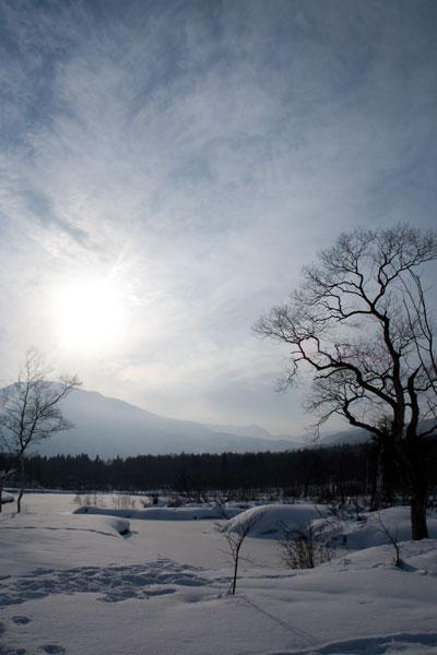 雪のいもり池