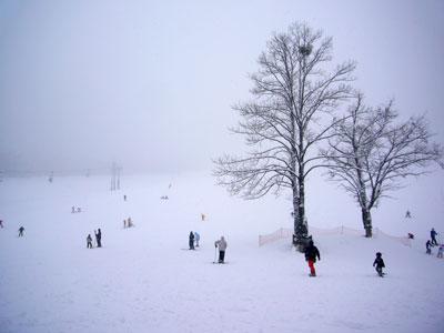 スキー客もまばら