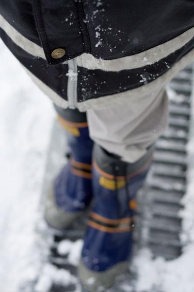 雪をつけて