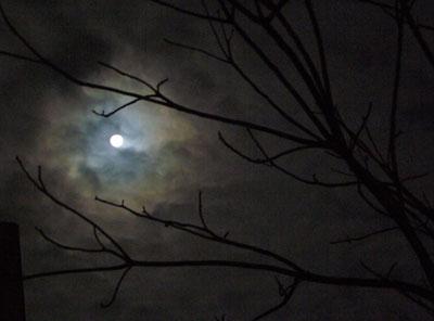 雲の切れ間から、見えた月