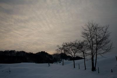 冬の松之山の風景