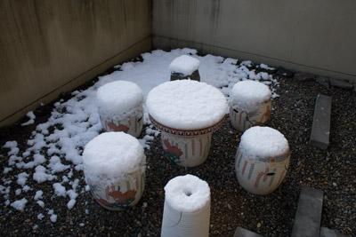 綿雪の様相
