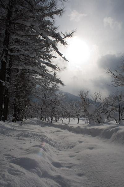 雪に閉ざされて
