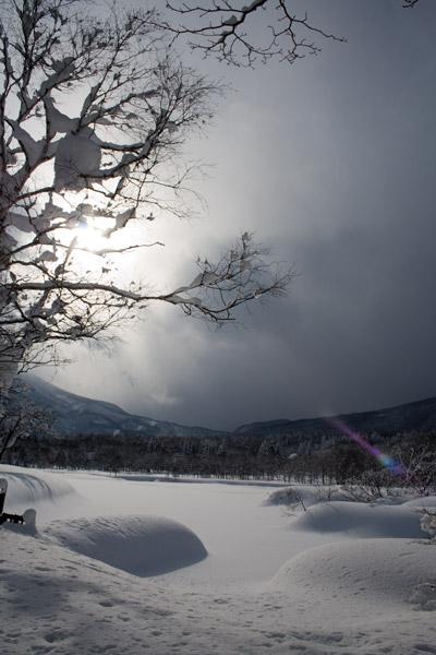 雪に覆われたいもり池