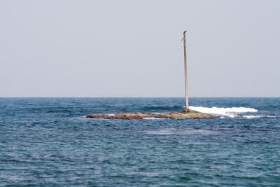 海に立つ電柱