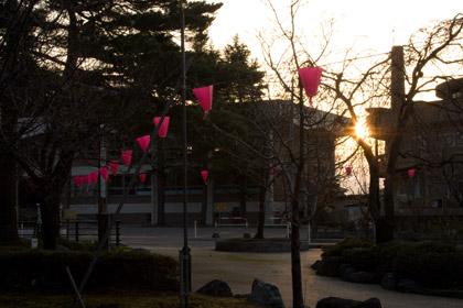 高田公園東側から見る朝日