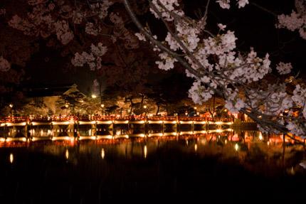 高田公園西堀橋の映り込み