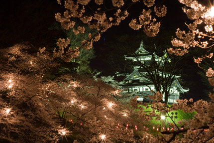高田城三重櫓と夜桜
