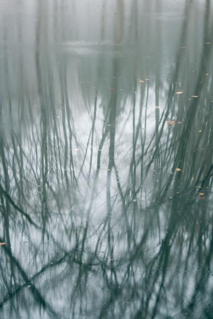 美人林小池の映り込み