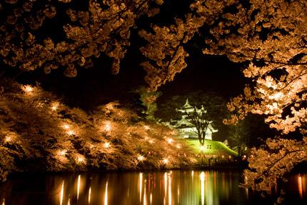 北側から見た高田城三重櫓のライトアップ