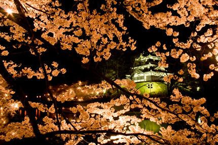南側から見た高田城三重櫓のライトアップ