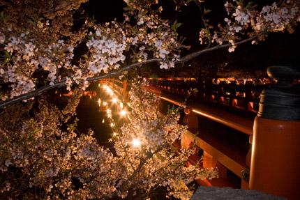 西堀橋のライトアップ