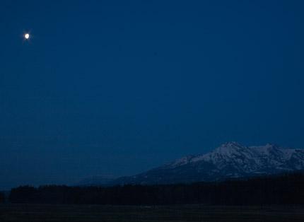 月が、闇を照らしていました