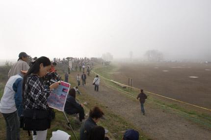 あたり一面濃い霧に覆われています