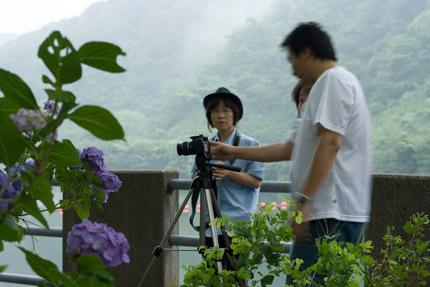 紫陽花撮影会