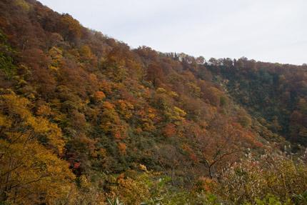 燕温泉から見る紅葉