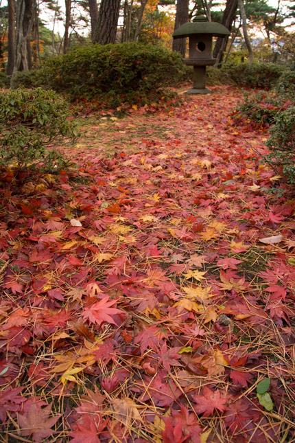 すでに赤い絨毯