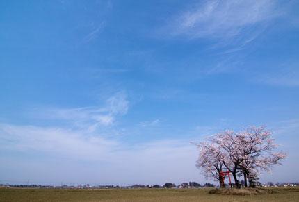広い広い広い田の真ん中にポツンと