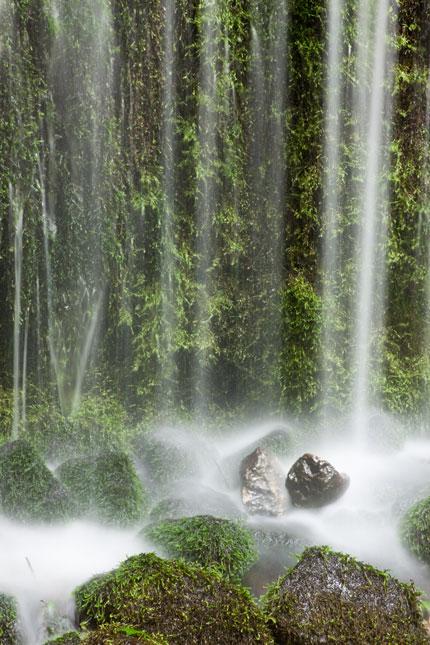 苔のある滝風景