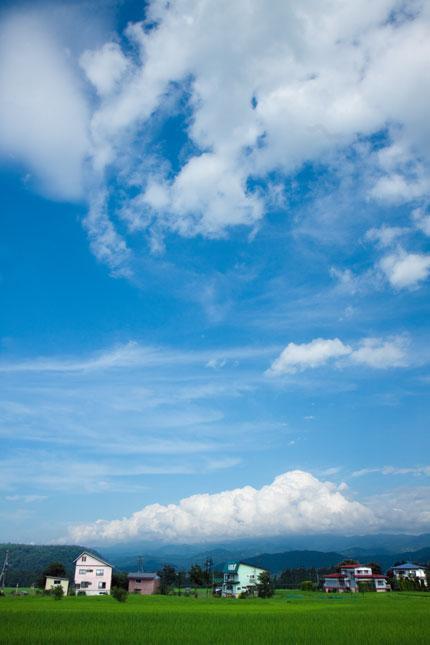 気持ちよさそうな入道雲