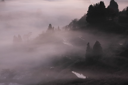 朝霧が立ちこめ暗黒世界のよう