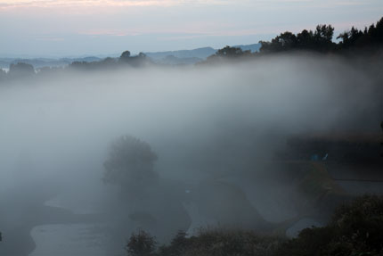 谷にあった霧が蠢(うごめ)いています