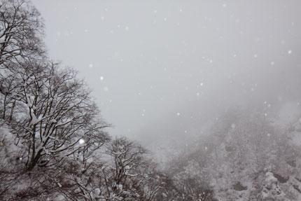 シンシンと降る雪