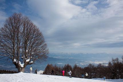 野尻湖、長野市内が見渡せる杉ノ原スキー場