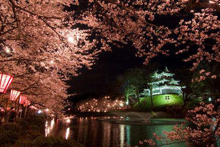 高田城と夜桜
