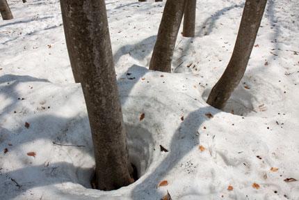 雪が沢山残っていた