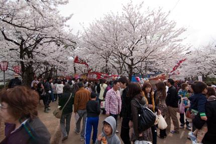 満開も桜を見ようと今年一番の人出でした