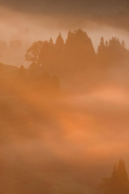 朝霧に輝く光芒