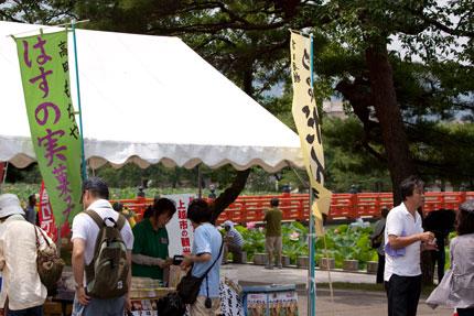 芝生広場のテント