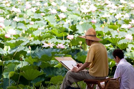 蓮の絵を描く人も見られます