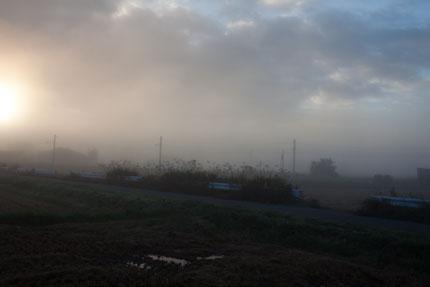 松本では、濃い霧