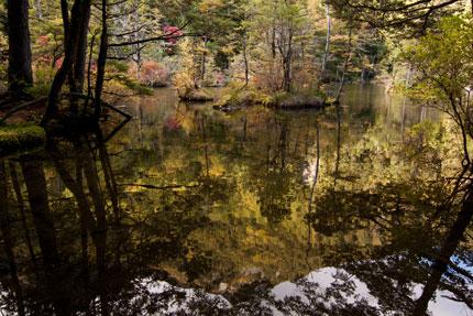 池に映った明神岳