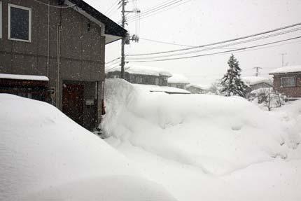 1月30日の上越市大貫の雪