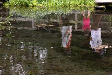 湧き水の池
