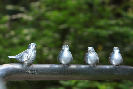 かわいい雀